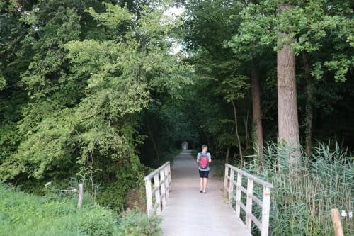 Op weg van Zandhoven naar Pulderbos langs de boskapel