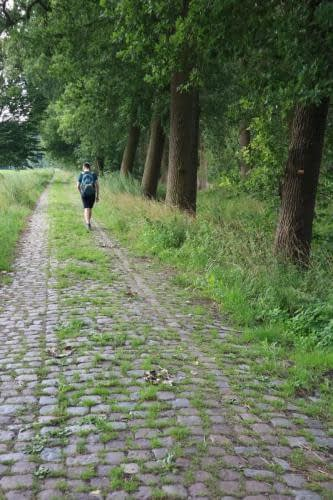 Kevin op wandelpad tussen Kasteelvoetweg en Klinketstraat in Hoogstraten