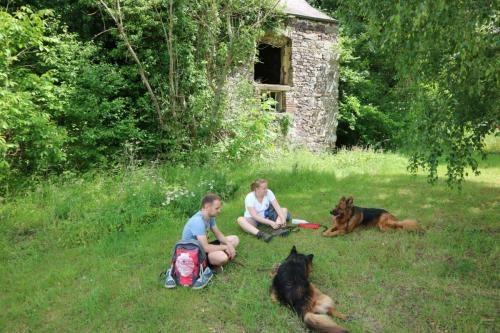 Picknicken aan de ruïnes van de abdij van Aulne