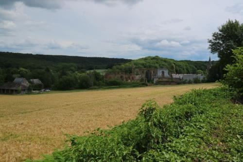 Zicht op de ruïnes van de abdij van Aulne
