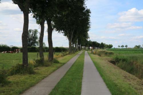 Karreweg in Rijkevorsel