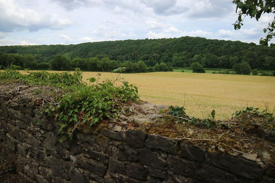 Zicht op de vallei van de Samber in Aulne