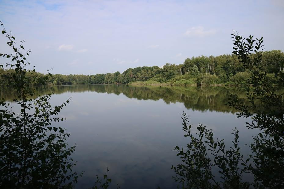Natuurgebied Hoofsweer in Sint-Lenaarts (Brecht)