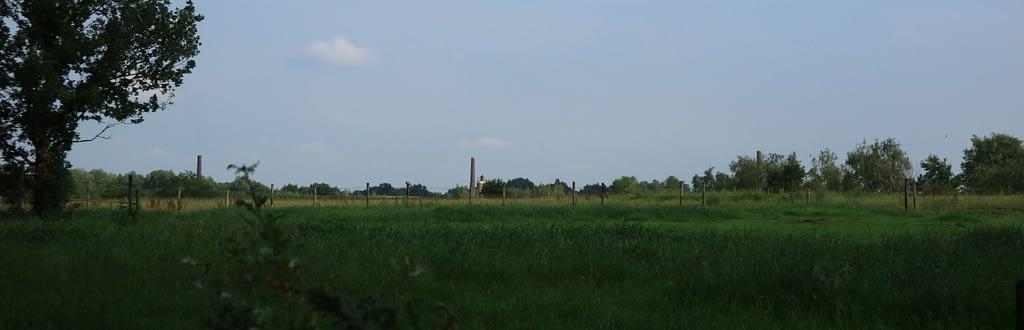Zicht op drie schoorstenen van de oude steenbakkerijen in Westmalle