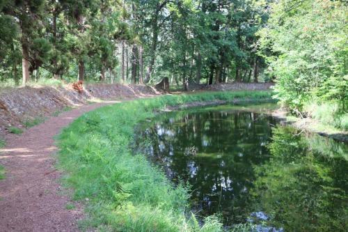 Overblijfsel van de Franse tuinen in natuurgebied 's Herenbos